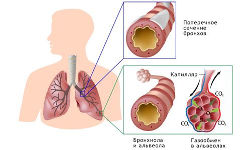 температура при бронхите у детей