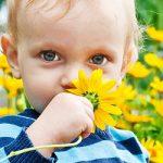 Повышение температуры тела при аллергической реакции