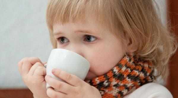 малина при температуре у ребенка
